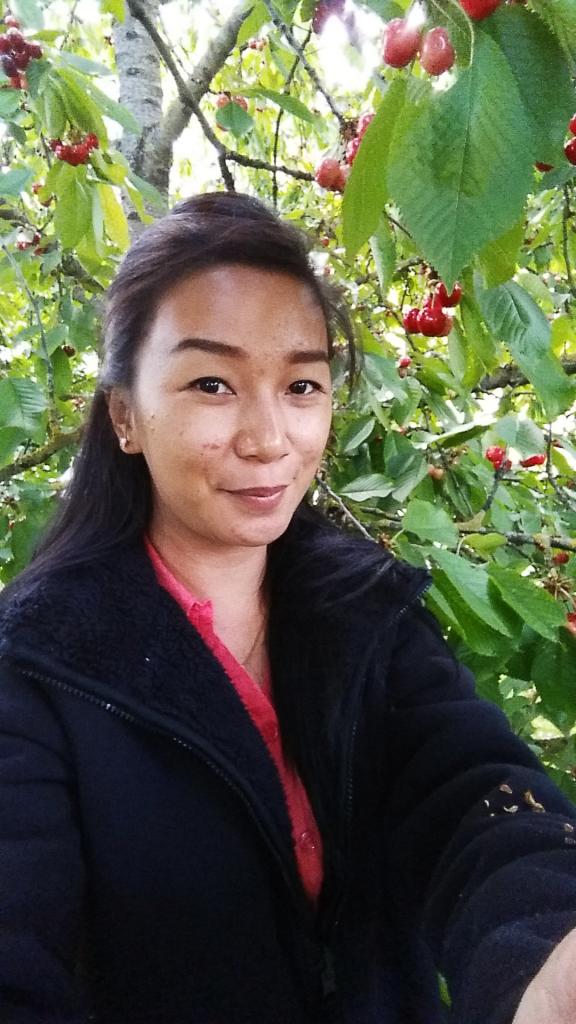 Cherry (5)